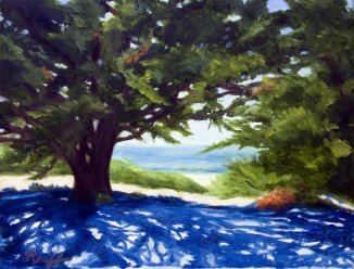 Monterey Lace, Oil, 16x20